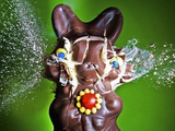 Dum Dum Bunny Photographic Print by Alan Sailer