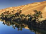 Dune rising from Um el Ma Lake Fotografisk tryk af Frank Krahmer