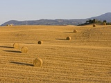 Italy, Tuscany, Bales of straw on corn field, Farmstead in background Photographic Print by Fotofeeling