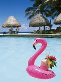 Cook Islands, South Pacific, Rarotonga, Tropical Drink in Pink Flamingo Float Lmina fotogrfica por Chris Cheadle