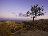 Moonrise over Bryce Canyon National Park Photographic Print by John Eastcott & Yva Momatiuk