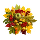 An autumn wreath with leaves, apples and berries Lámina giclée