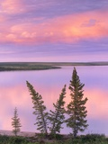 Calm Lake Reflecting Pink Clouds Photographic Print by Gavriel Jecan