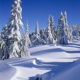 Mount Elphinstone, Near Gibsons, Sunshine Coast, British Columbia, Canada. Photographic Print by Dean van't Schip