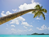 Idyllic tropical beach Photographic Print by Alfred Saerchinger