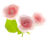 Pink rose Photographic Print by Kiyoshi Miyagawa