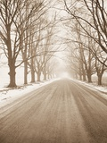 Peaceful Country Road in Rural Michigan Photographie par Tom Marks