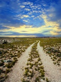 Dirt Road in Grand Canyon National Park Photographic Print by Craig Aurness