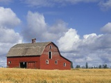 Old Barn Near Devon, Alberta, Canada Photographic Print by Darwin Wiggett