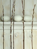 Easter eggs on shelf with pussy willow twigs Photographic Print by Achim Sass