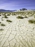 Dry and cracked mud flats in Death Valley National Park Photographic Print by John Eastcott & Yva Momatiuk