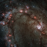 Star Birth in the Southern Pinwheel Galaxy Photographic Print