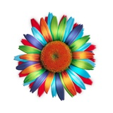Brightly colored daisy Reproduction proc&#233;d&#233; gicl&#233;e