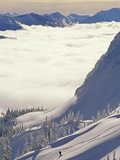 Skier Skiing Fresh Deep Powder in Backcountry Near Fernie, East Kootenays, British Columbia, Canada Photographic Print by Henry Georgi