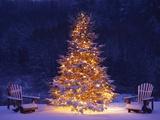 Snow Covering Adirondack Chairs by Lit Christmas Tree Fotografie-Druck von Jim Craigmyle