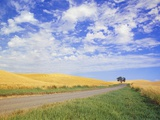 Dirt Road Running Through Farm Fields Photographic Print by Craig Tuttle