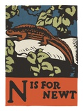 N is for newt Giclee Print