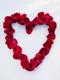 Heart shape made of petals Photographic Print