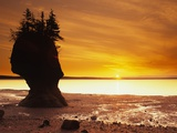 Hopewell Rocks, New Brunswick, Canada Photographic Print by  Barrett & Mackay