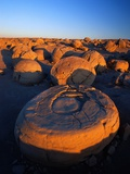 Pumpkin Patch Concretions Photographic Print by Richard Cummins