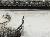 Birds on tiled roof in Xidi, China Photographic Print by Yang Liu