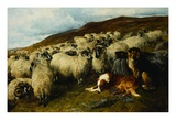 Weary But Watchful Giclee Print by John Sargent Noble