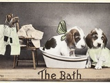 The Bath Photographic Print