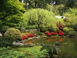 Japanese Garden Pond Photographic Print by Craig Tuttle