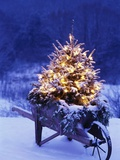 Lighted Christmas Tree in Wheelbarrow Photographic Print by Jim Craigmyle