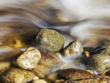 Water rushing past river stones Photographic Print by Frank Krahmer