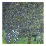 Roses under the Trees Lámina giclée por Gustav Klimt
