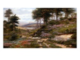 Through the Heather, Dunkeld, Scotland, United Kingdom Reproduction procédé giclée par George Vicat Cole