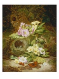 Primroses, Polyanthus, Apple Blossom and a Bird's Nest on a Mossy Bank Giclee Print by Thomas Worsey