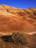 Oregon's Painted Hills Photographic Print by Craig Tuttle
