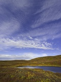 Cirrus and Cumulus Clouds Above Autumn Tundra in Denali National Park Photographic Print by John Eastcott & Yva Momatiuk