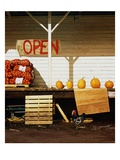 Open Giclee Print by Reynard Milici