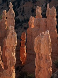 Limestone Hoodoos from Fairyland Point Photographic Print by David Muench