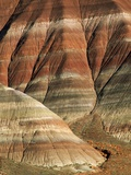 Striated Rock Formations Photographic Print by Joe McDonald