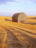 Barn in Harvested Field Photographic Print by Terry Eggers