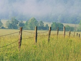 Rural Fence Photographic Print by William Manning
