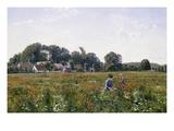 Gathering Wild Flowers Giclee Print by Johannes Boesen