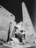 Detail of the Temple of Luxor Fotografie-Druck von Stuart Westmorland