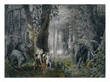Lithograph of an Elephant Hunt After Graf Andrasy Giclee Print by  Stapleton Collection