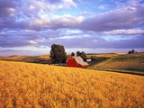 Barn Surrounded by Fields Photographic Print by Craig Tuttle