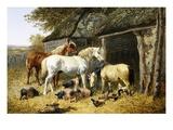 Farmland Friends Premium Giclee Print by John Frederick Herring II