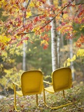 Yellow Chairs and Fall Foliage Photographic Print by  Owaki - Kulla