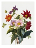 Still Life of Dahlias Giclee Print by Georgius van Os