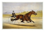 Queen of the Turf, 'Maud S', Driven by W.W. Bair, Lithograph Giclee Print by Nicholas Winfield Scott Leighton