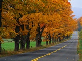 Rural Road in Autumn Photographic Print by Joseph Sohm