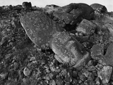 Moai Lies on Rocks and Boulders Photographic Print by Chris Rainier